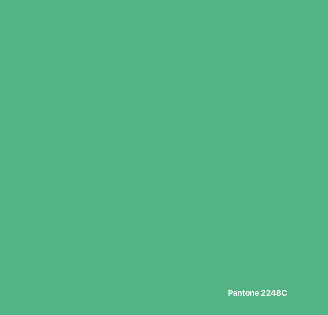 GG-Univers-Couleur-VertClair